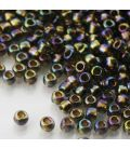 TOHO Round 6/0 Gold-Lined Rainbow Black Diamond