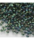 TOHO Round 11/0 Inside-Color Crystal/Prairie Green Lined - 30g